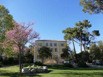 Hôtel de ville, Corte