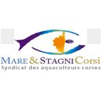 Logo Mare & stagni