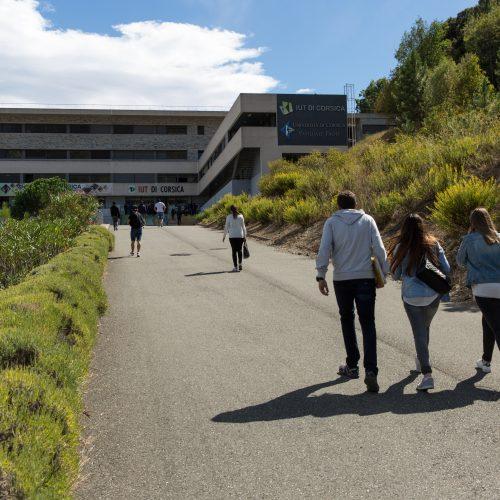 IUT de Corse, Campus Grimaldi